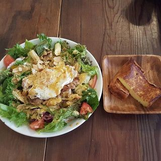 Main_Dish_Salad_Lunch_______________________M.jpg